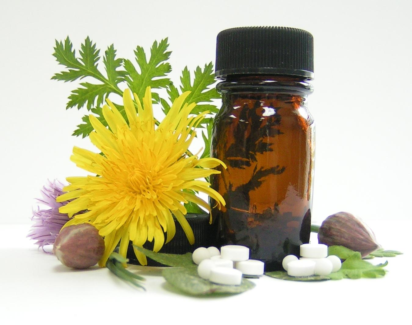 quimica_viva_plantas_medicinais_freeimages_com